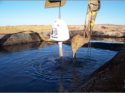 Bioremediation and Spill Cleanup
